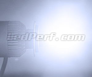 Motorcycle H3 LED COB Bulb