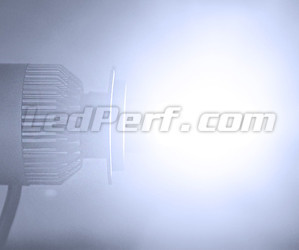 Motorcycle H7 COB LED Bulb