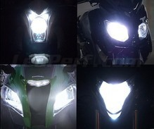 Xenon Effect bulbs pack for Kawasaki D-Tracker 150 headlights