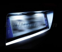 LED Licence plate pack (xenon white) for Renault Clio 3