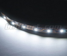 Standard flexible strip with 6 leds TL SMD white