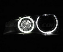 H8 angel eyes pack with white (pure) 6000K LEDs for BMW X5 (E70) - Standard