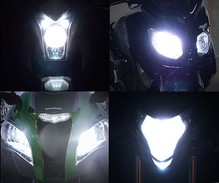 Xenon Effect bulbs pack for Kawasaki Ninja 125 headlights